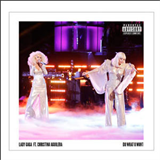Do What U Want (Feat.Christina Aguilera) (Single)