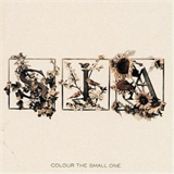 Colour The Small One - US Release